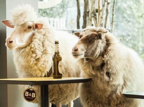 Das Schlaf als neuer Markenbotschafter von B&B Hotels